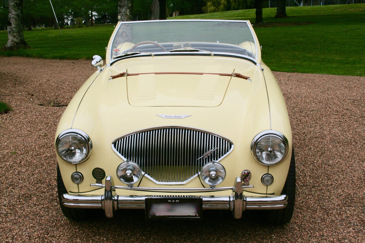1953 AUSTIN HEALEY 100/4  For Sale (picture 3 of 6)