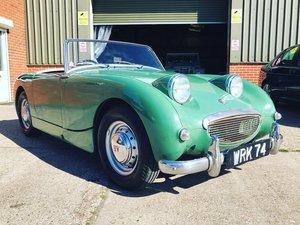 1959 AUSTIN HEALEY FROG EYE SPRITE For Sale