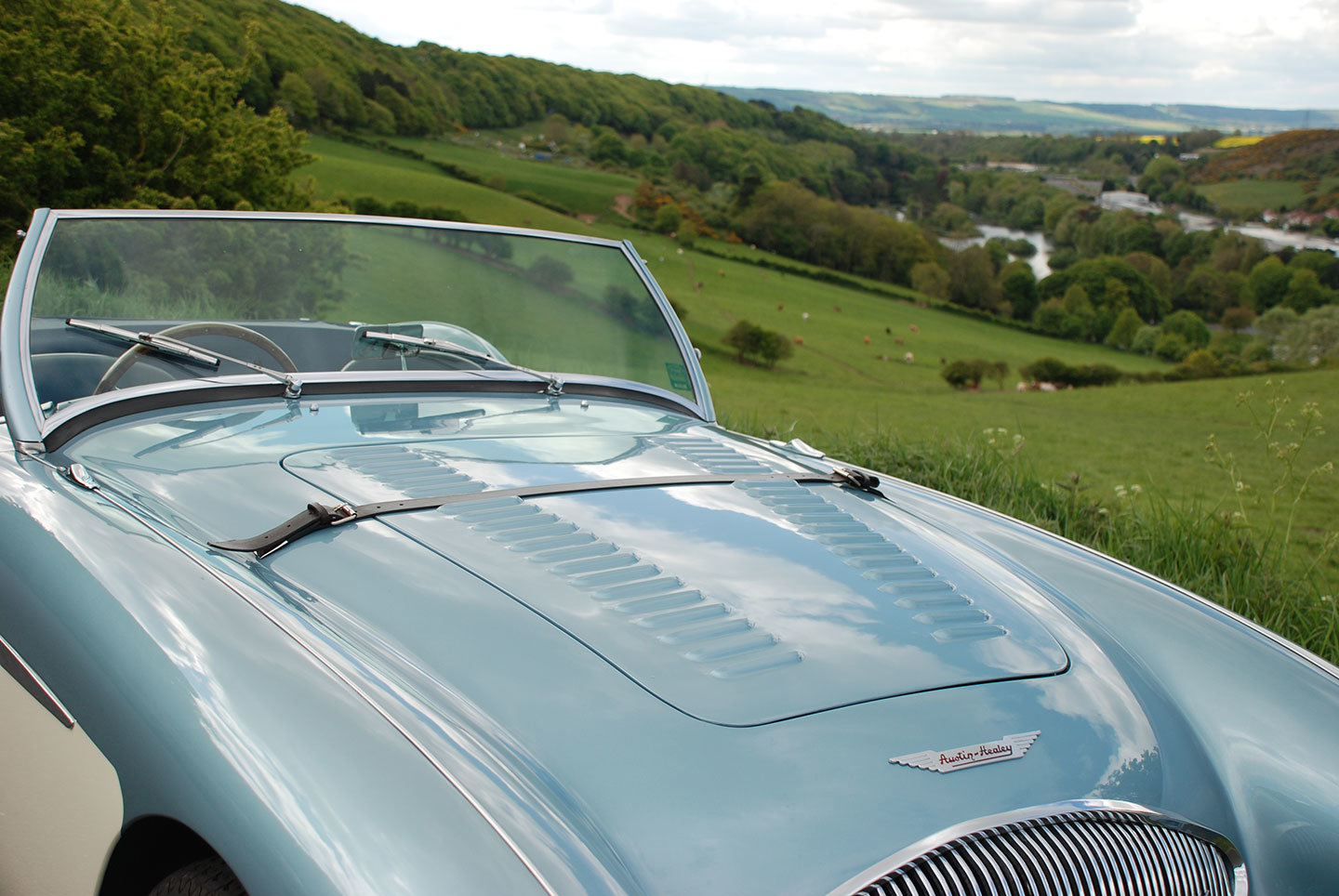 1955 Austin Healey 100/4 BN2 M Specification For Sale (picture 5 of 10)