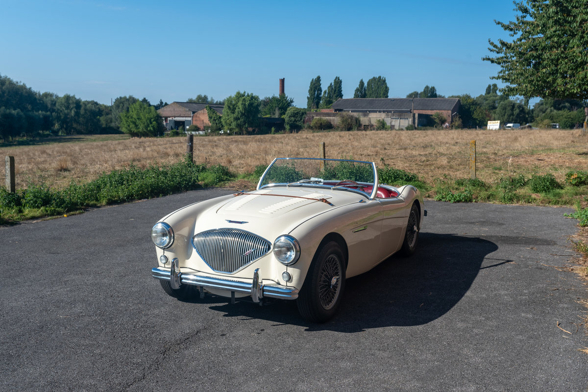 1956 Austin healey 100/4 bn2 (mille miglia eligible) For Sale (picture 2 of 6)
