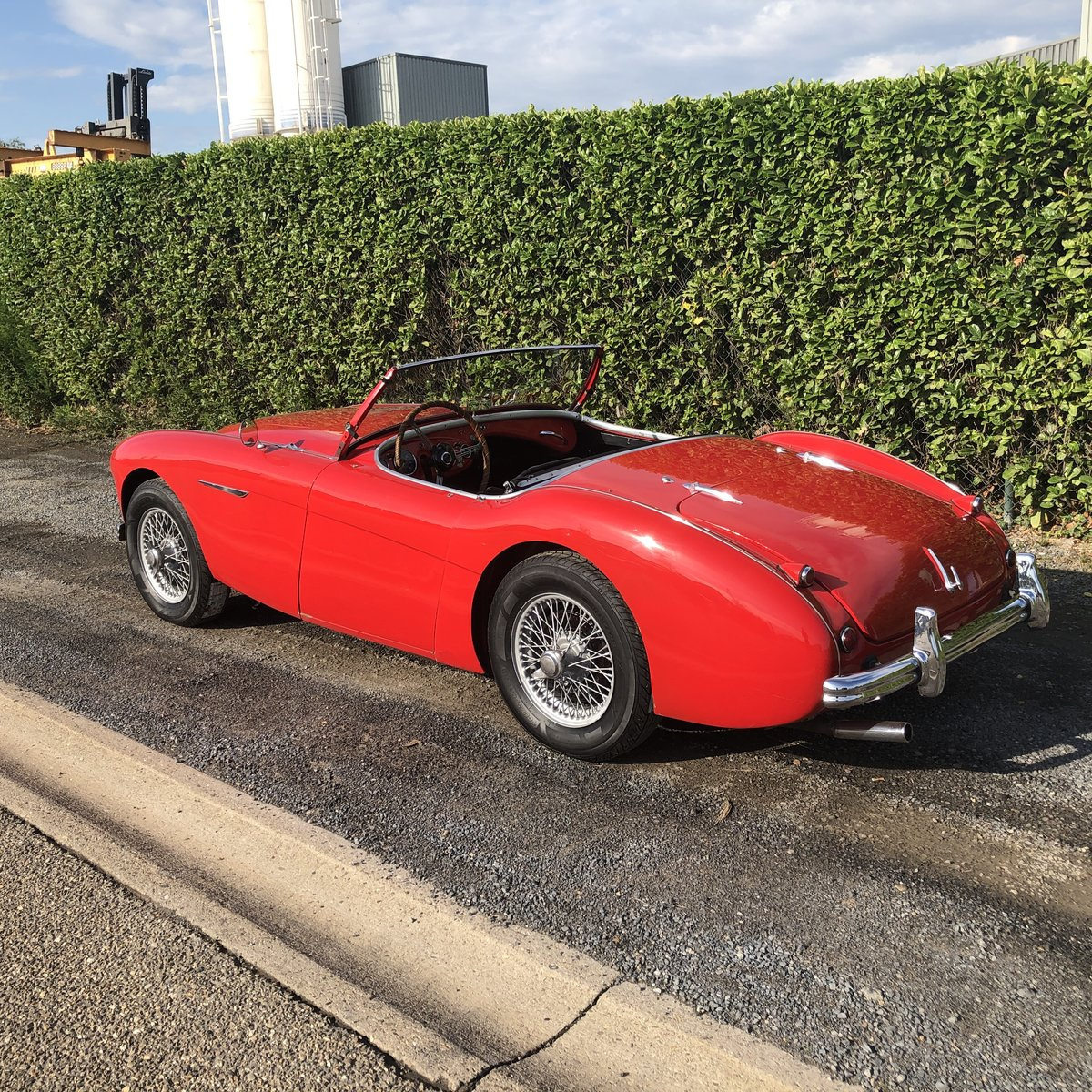 1955 Austin Healey 100/4 BN2 LHD For Sale (picture 2 of 6)