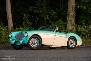 1954 AUSTIN HEALEY 100-4, Mille Miglia Eligible For Sale