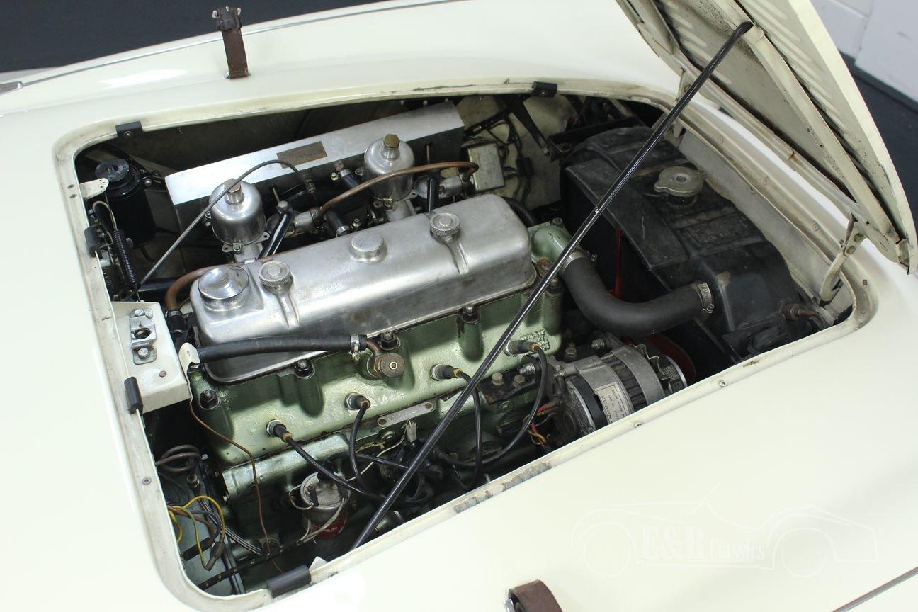 Austin Healey 100-4 BN2 1956 Le mans modification For Sale (picture 4 of 6)