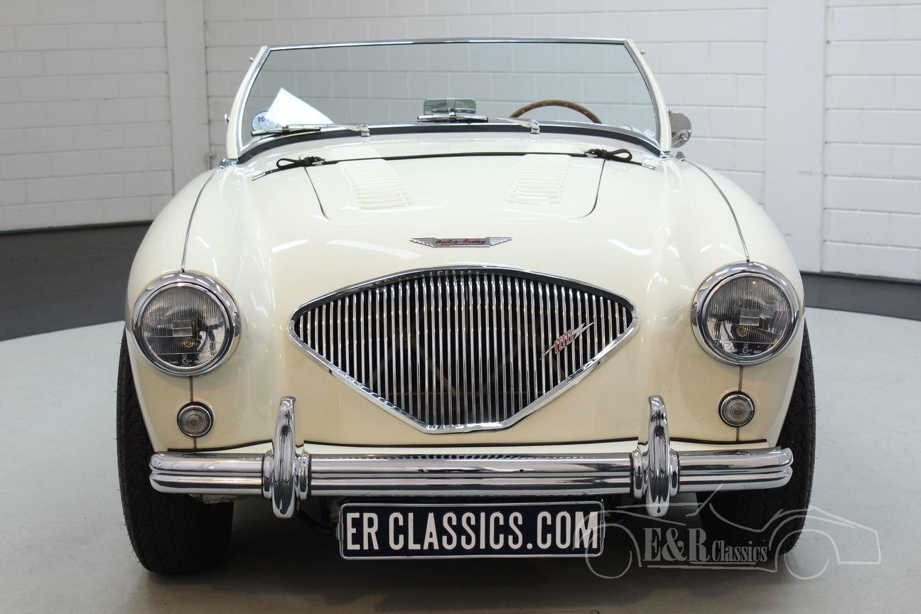 Austin Healey 100-4 BN2 1956 Le mans modification For Sale (picture 5 of 6)