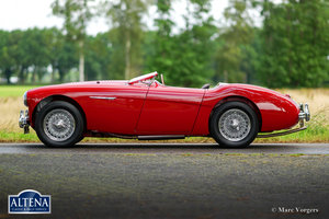 Austin Healey 100M 'Le Mans' 1955 For Sale