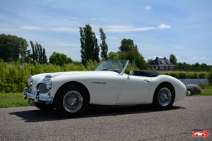 1961 Austin Healey 3000 - very well prepared, comes with hardtop