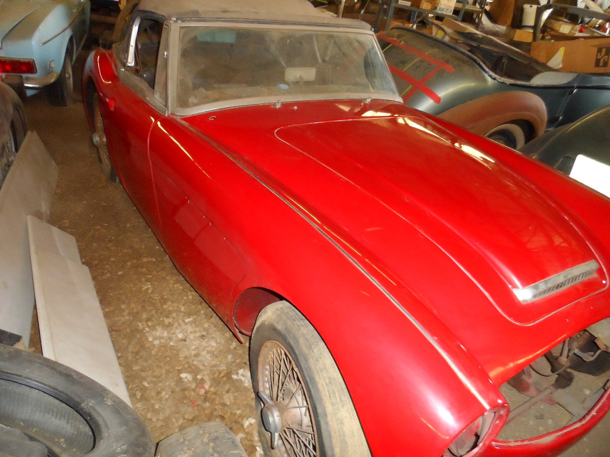 1963 Austin Healey 3000 repainted rust free car For Sale (picture 2 of 6)