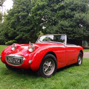 1958 Austin Healy Frog Eye. For Sale