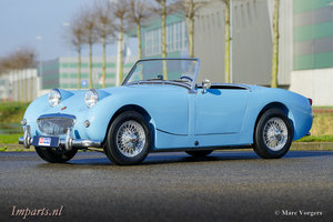 Picture of 1960 Excellent Austin Healey Sprite Mk1 (LHD)