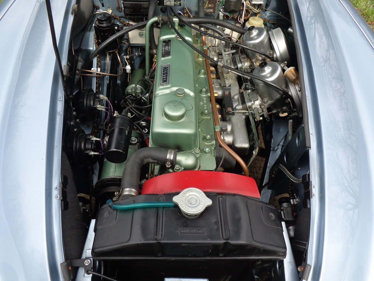 1967 AUSTIN HEALEY 3000 MK 3 PH 2 -  RESTORED TO SHOW STANDARD! For Sale (picture 6 of 6)