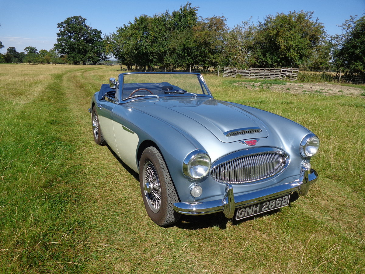 1964 AUSTIN HEALEY 3000 MK 3 PH 2 -  RESTORED TO SHOW STANDARD! For Sale (picture 2 of 6)