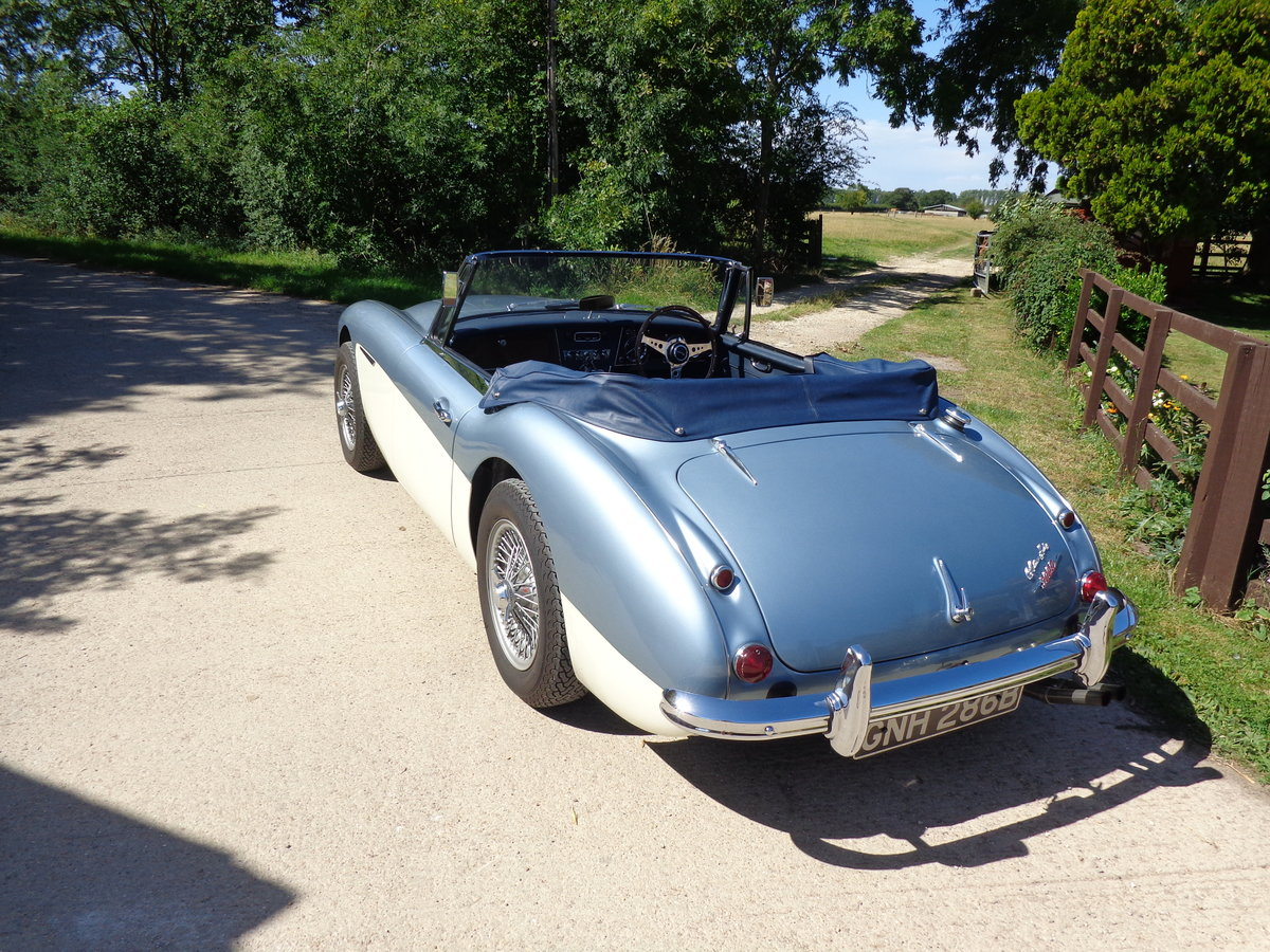 1964 AUSTIN HEALEY 3000 MK 3 PH 2 -  RESTORED TO SHOW STANDARD! For Sale (picture 3 of 6)
