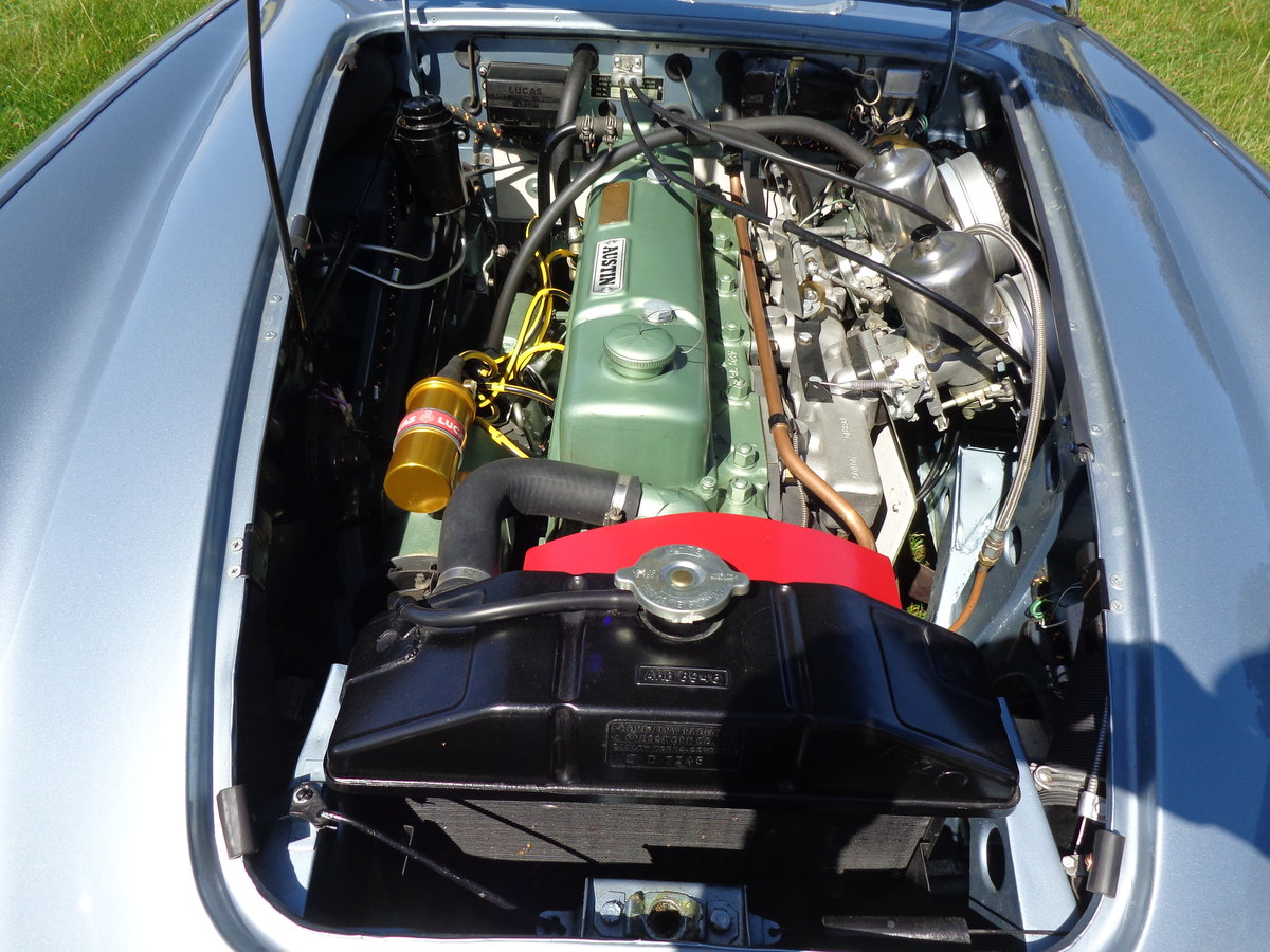 1964 AUSTIN HEALEY 3000 MK 3 PH 2 -  RESTORED TO SHOW STANDARD! For Sale (picture 6 of 6)