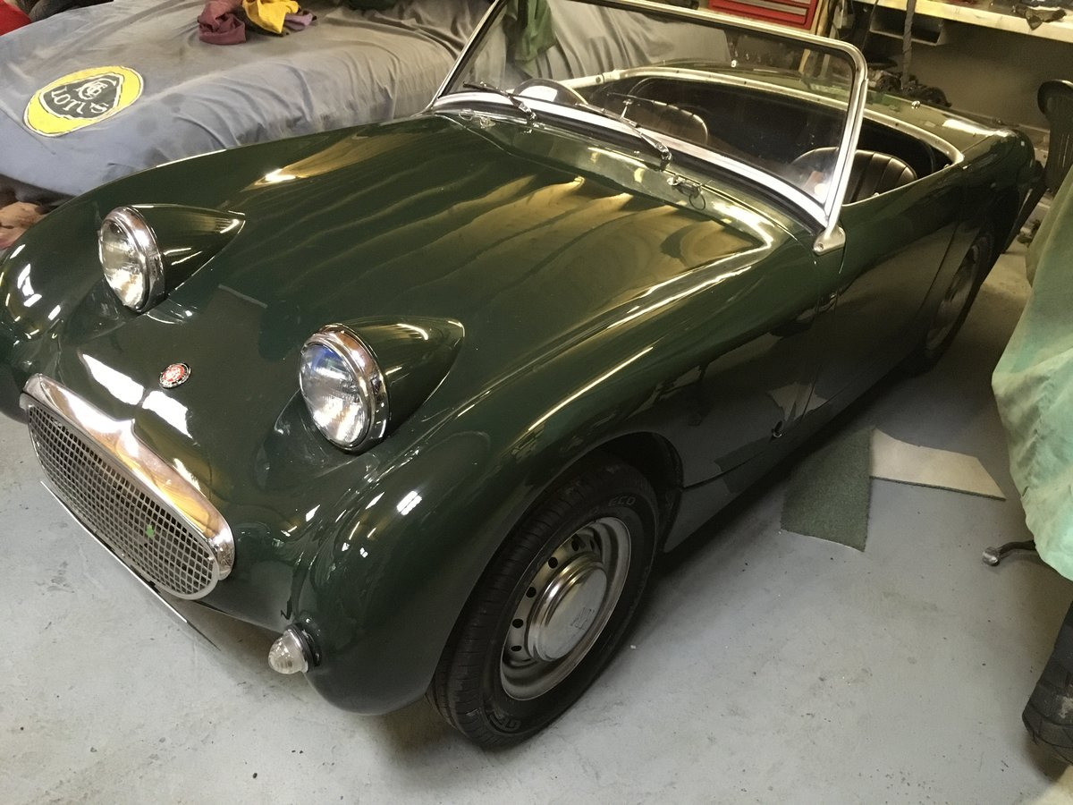 1960 Frogeye Sprite For Sale (picture 3 of 6)