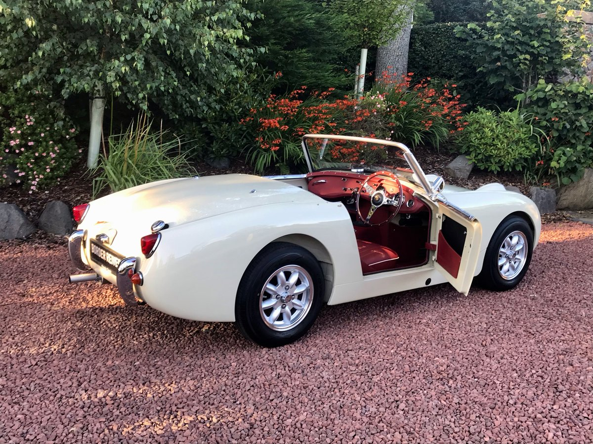 1959 Austin Healey Sprite MK1 Frogeye fantastic condition SOLD (picture 6 of 6)