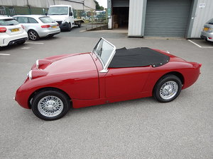 Picture of 1959 AUSTIN HEALEY Frogeye Mk1 Sprite ~  SOLD