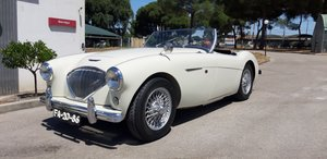 Picture of 1954 Austin Healey 100/4 Brand new