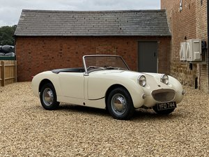 Picture of 1959 Austin Healey Frogeye Sprite. Beautifully Presented SOLD