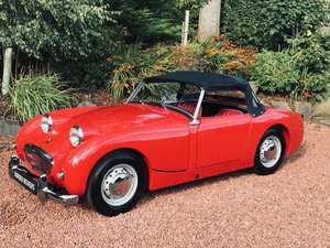 Austin Healey Sprite MK1 Frogeye fantastic 1 previous owner