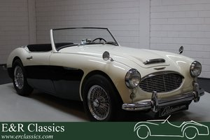 Picture of Austin Healey 100-6 restored white and black 1956