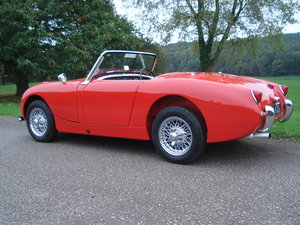 Picture of 1960 Multiple concours winning 'Frogeye' Sprite For Sale