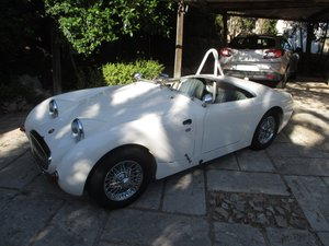 Picture of 1959 LHD- Austin Healey Sprite MK1 - race car GTP group
