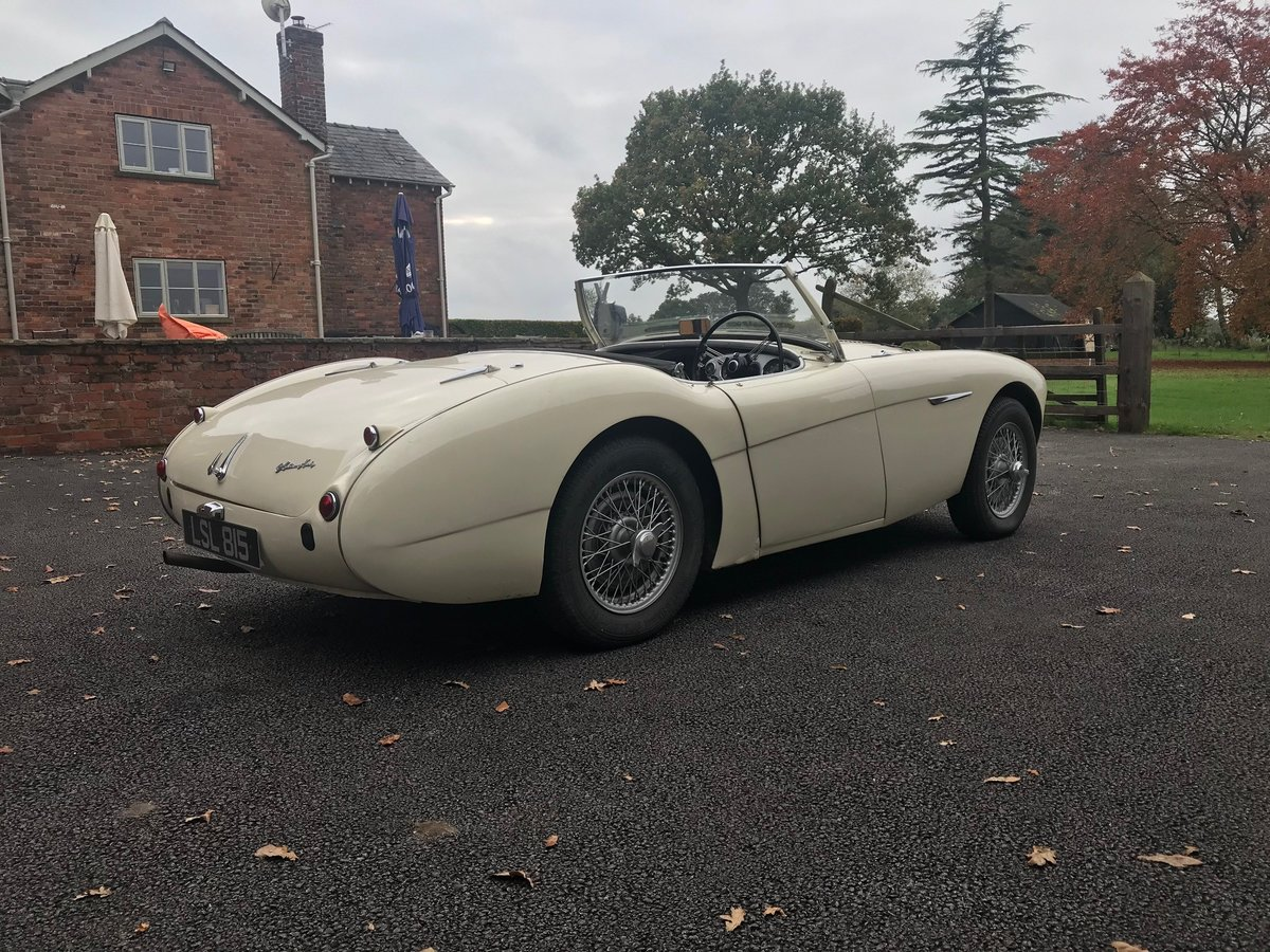 1956 Austin Healey 100/4 BN2 For Sale (picture 5 of 6)