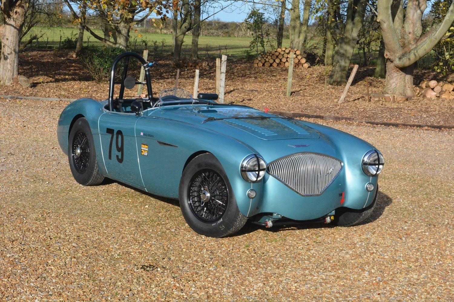1956 Immaculate Austin Healey 100 Race Car For Sale (picture 1 of 6)