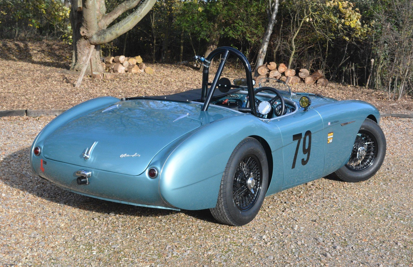 1956 Immaculate Austin Healey 100 Race Car For Sale (picture 2 of 6)