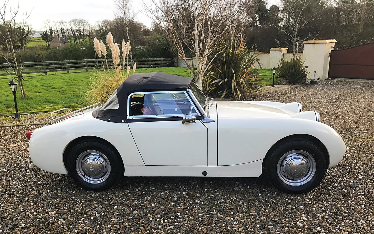1960 AUSTIN HEALEY FROGEYE SPRITE IN SUPERB ORDER - MAY PX For Sale (picture 2 of 10)