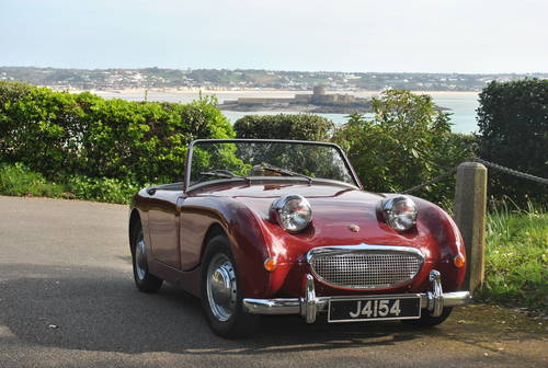 1960 Austin Healey Frogeye Sprite. Jersey Classic Hire. com For Hire (picture 4 of 6)