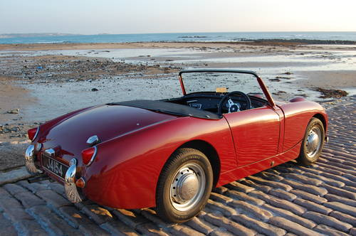 1960 Austin Healey Frogeye Sprite. Jersey Classic Hire. com For Hire (picture 5 of 6)