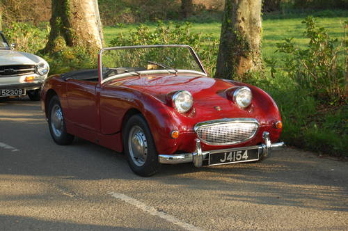 1960 Austin Healey Frogeye Sprite. Jersey Classic Hire. com For Hire (picture 6 of 6)