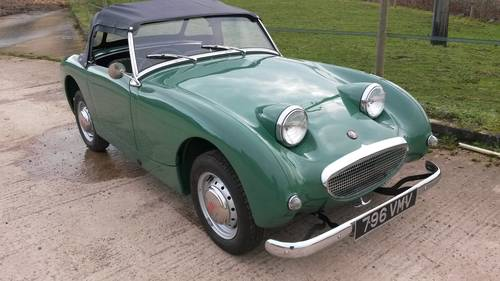 1959 Austin Healey Frogeye Sprite NOW SOLD, SIMILAR REQUIRED Wanted (picture 2 of 6)