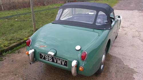 1959 Austin Healey Frogeye Sprite NOW SOLD, SIMILAR REQUIRED Wanted (picture 3 of 6)