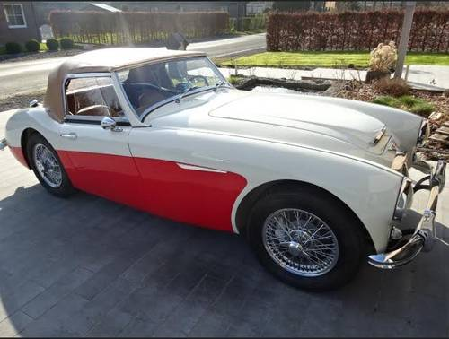 1962 Austin healey 3000 For Sale (picture 1 of 5)