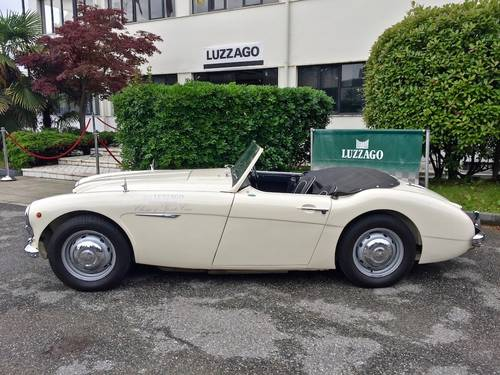 1959 Austin Healey - 100/6 BN4 RHD For Sale (picture 2 of 6)