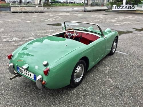 1960 Austin Healey - Sprite MKI For Sale (picture 3 of 6)