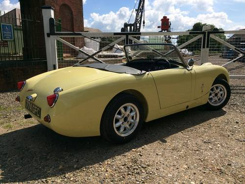 1959 Austin Healey Frog Eye Sprite.   ''End of season offer'' SOLD (picture 1 of 5)