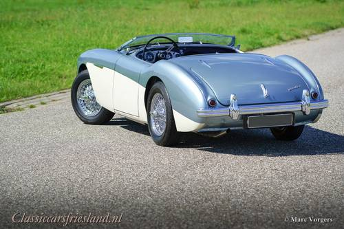 AUSTIN HEALEY 100/4 BN1 1955 - TOP CONDITION SOLD (picture 3 of 6)