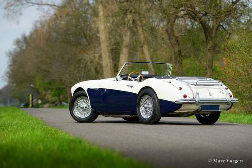 AUSTIN HEALEY 100/6 1957 IN PERFECT CONDITION SOLD (picture 3 of 6)