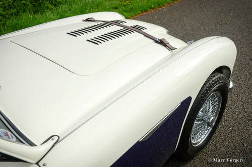 AUSTIN HEALEY 100/6 1957 IN PERFECT CONDITION SOLD (picture 6 of 6)