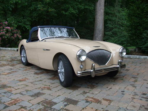 Austin Healey 100/4 BN1 1953 For Sale (picture 1 of 3)
