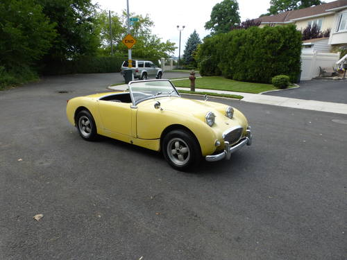 1960 Austin Healey Bugeye Sprite Driver - SOLD (picture 1 of 6)