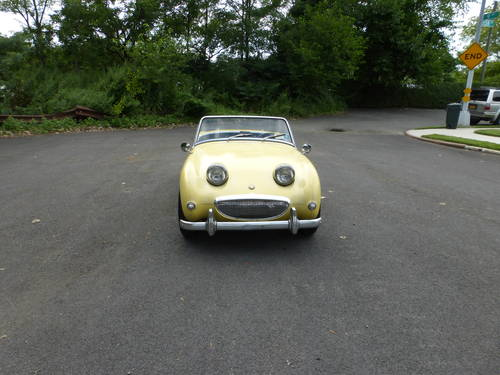 1960 Austin Healey Bugeye Sprite Driver - SOLD (picture 2 of 6)