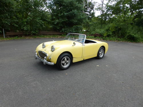 1960 Austin Healey Bugeye Sprite Driver - SOLD (picture 3 of 6)