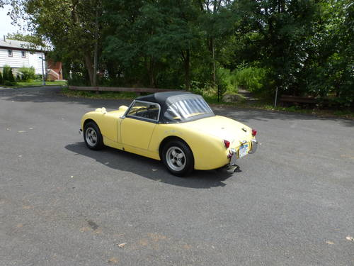 1960 Austin Healey Bugeye Sprite Driver - SOLD (picture 4 of 6)