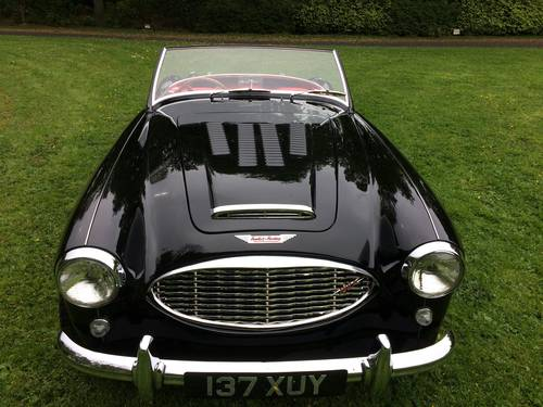 1958 Ground up restoration Austin Healey 100/6 BN6 RARE 2 seater For Sale (picture 3 of 6)