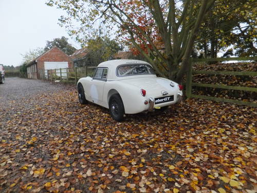 1958 FIA Race car Healey Sprite mk1 For Sale (picture 2 of 6)