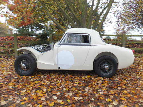 1958 FIA Race car Healey Sprite mk1 For Sale (picture 4 of 6)